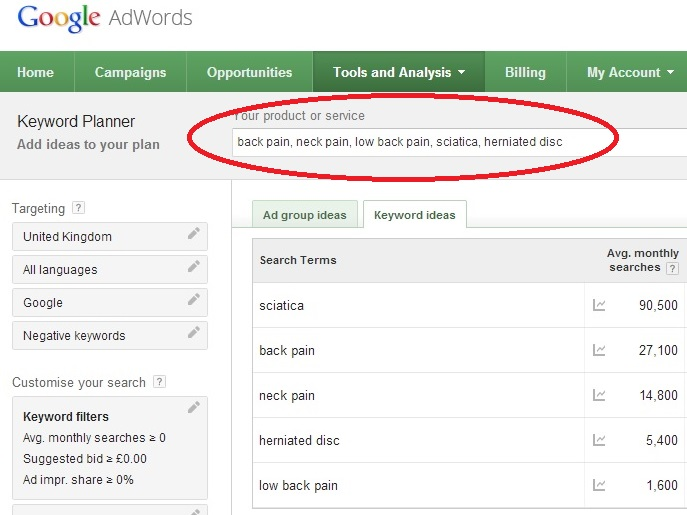 Google adwords Back Pain Searches