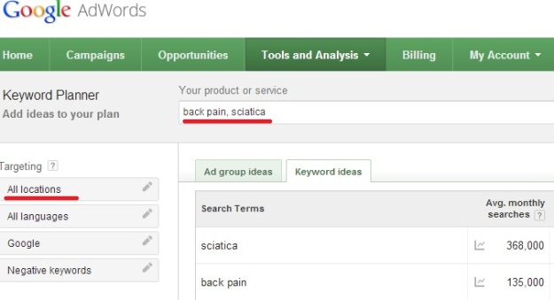 Google sciatica search results global